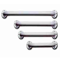 Handicap Shower Grab Bars