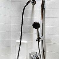 Handicap Shower Accessories